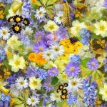 flowers-colorful-plants-bloom